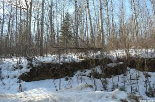 Photo 4: 154 Carwin Park Drive in Emma Lake: Lot/Land for sale : MLS®# SK846951