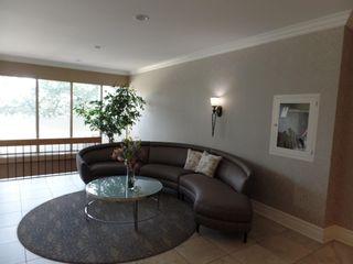 Photo 28: 201 9908 114 Street in Edmonton: Zone 12 Condo for sale : MLS®# E4254333