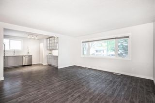 Photo 9: 149 Newman Avenue in Winnipeg: East Transcona Residential for sale (3M)  : MLS®# 202113541