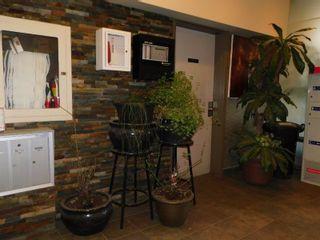 Photo 19: 509 9710 105 Street in Edmonton: Zone 12 Condo for sale : MLS®# E4236904