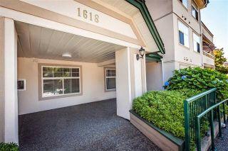 "Photo 2: 303 1618 GRANT Avenue in Port Coquitlam: Glenwood PQ Condo for sale in ""WEDGEWOOD MANOR"" : MLS®# R2110727"
