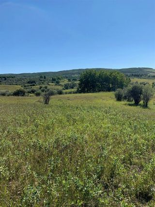 Photo 14: Highway 549 and 176 St W: Rural Foothills County Residential Land for sale : MLS®# A1141673
