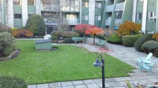 """Photo 29: 108 3901 CARRIGAN Court in Burnaby: Government Road Condo for sale in """"LOUGHEED STATE"""" (Burnaby North)  : MLS®# R2584002"""
