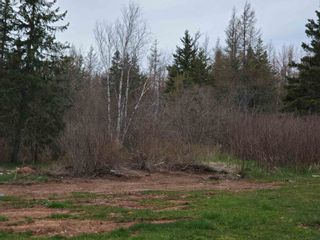 Photo 3: VL Hunter Road in West Wentworth: 103-Malagash, Wentworth Vacant Land for sale (Northern Region)  : MLS®# 202110930