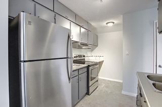 Photo 11: 11 711 3 Avenue SW in Calgary: Downtown Commercial Core Apartment for sale : MLS®# A1125980