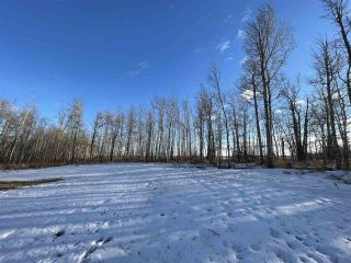 Photo 32: 13 55504 RGE RD 13: Rural Lac Ste. Anne County House for sale : MLS®# E4229579