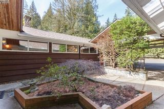 Photo 4: 5715 Old West Saanich Rd in VICTORIA: SW West Saanich House for sale (Saanich West)  : MLS®# 781269
