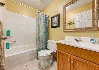 Photo 25: 14 Royal Birch Grove NW in Calgary: Royal Oak Detached for sale : MLS®# A1073749