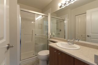 """Photo 20: 8 7503 18TH Street in Burnaby: Edmonds BE Townhouse for sale in """"SOUTHBOROUGH"""" (Burnaby East)  : MLS®# V795972"""