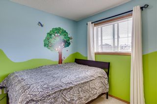 Photo 24: 67 EVERSYDE Circle SW in Calgary: Evergreen Detached for sale : MLS®# C4242781