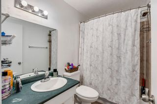 Photo 6: 168 Dover Meadow Close SE in Calgary: Dover Detached for sale : MLS®# A1082428
