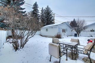 Photo 40: 8019 4A Street SW in Calgary: Kingsland Detached for sale : MLS®# A1063979