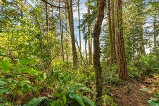 Photo 7: 2550 Seaside Dr in : Sk French Beach Land for sale (Sooke)  : MLS®# 873874