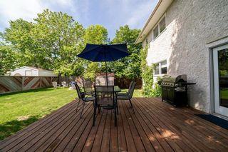 Photo 34: 202 Vista Avenue in Winnipeg: St Vital Residential for sale (2E)  : MLS®# 202011762