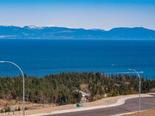 Photo 7: 4663 Ambience Dr in NANAIMO: Na North Nanaimo Land for sale (Nanaimo)  : MLS®# 838844
