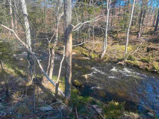 Photo 12: Lot NO 101 Highway in Brighton: 401-Digby County Vacant Land for sale (Annapolis Valley)  : MLS®# 202111786