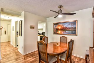 """Photo 9: 105 225 MOWAT Street in New Westminster: Uptown NW Condo for sale in """"THE WINDSOR"""" : MLS®# R2295309"""