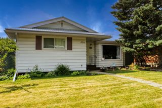 Photo 41: 3231 52 Avenue NW in Calgary: Brentwood Detached for sale : MLS®# A1128463