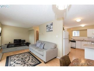 Photo 12: 13 3255 Rutledge St in VICTORIA: SE Quadra Row/Townhouse for sale (Saanich East)  : MLS®# 757193