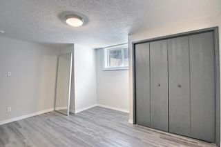 Photo 21: 3423 30A Avenue SE in Calgary: Dover Detached for sale : MLS®# A1114243