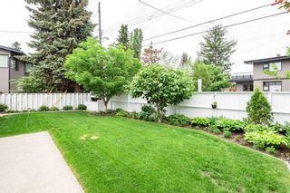 Photo 29: 8 VALLEYVIEW Crescent in Edmonton: Zone 10 House for sale : MLS®# E4249401