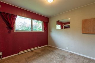 Photo 13: 587 Alder St in : CR Campbell River Central House for sale (Campbell River)  : MLS®# 878419