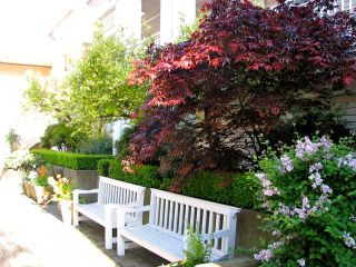 """Photo 10: 205 2545 W BROADWAY Street in Vancouver: Kitsilano Townhouse for sale in """"TRAFALGAR MEWS"""" (Vancouver West)  : MLS®# V851573"""
