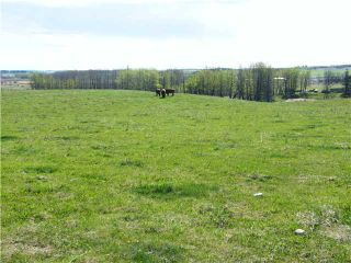 Photo 1: : Rural Mountain View County Rural Land for sale : MLS®# C3653320