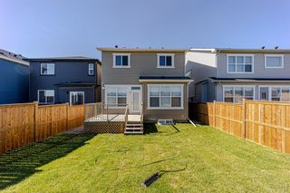 Photo 41: 144 Nolanhurst Heights NW in Calgary: Nolan Hill Detached for sale : MLS®# A1121573