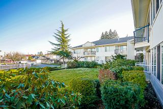Photo 14: 113 5875 IMPERIAL Street in Burnaby: Upper Deer Lake Condo for sale (Burnaby South)  : MLS®# R2132969