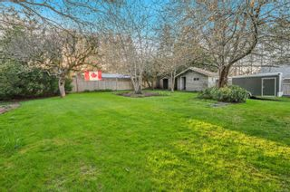 Photo 11: 3820 S Island Hwy in : CR Campbell River South House for sale (Campbell River)  : MLS®# 872934