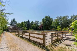 Photo 35: 3435 W 55TH Avenue in Vancouver: Southlands House for sale (Vancouver West)  : MLS®# R2622550