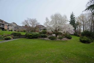 Photo 18: 206 74 MINER Street in New Westminster: Fraserview NW Condo for sale : MLS®# R2444229