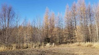 Photo 12: #3-51227 RGE RD 270 Road: Rural Parkland County Rural Land/Vacant Lot for sale : MLS®# E4211009