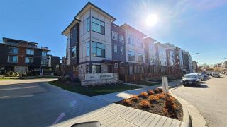 Photo 1: 13 20852 78B Avenue in Langley: Willoughby Heights Townhouse for sale : MLS®# R2569590