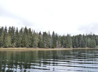 Photo 8: W1/2 SW&NW1/4 Quatsino Sound in : NI Port Hardy Land for sale (North Island)  : MLS®# 866764