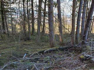 Photo 9: 3532 Parkview Cres in : PA Port Alberni Land for sale (Port Alberni)  : MLS®# 858454
