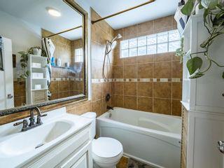 Photo 15: 9809 83 Avenue in Edmonton: Zone 15 House for sale : MLS®# E4242308