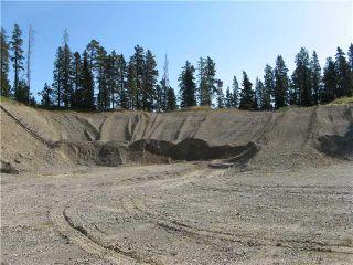 Photo 7: WEST OF BOTTREL in COCHRANE: Rural Rocky View MD Rural Land for sale : MLS®# C3492220