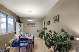 Photo 7: 255 Maitland Crescent NE in Calgary: Marlborough Park Detached for sale : MLS®# A1061446