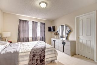 Photo 25: 59 TARINGTON Close NE in Calgary: Taradale Detached for sale : MLS®# C4216130