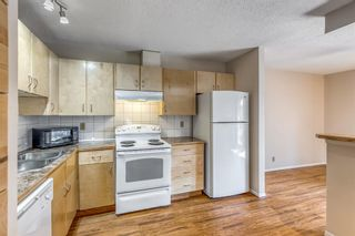 Photo 5: 5260 19 Avenue NW in Calgary: Montgomery Semi Detached for sale : MLS®# A1131869