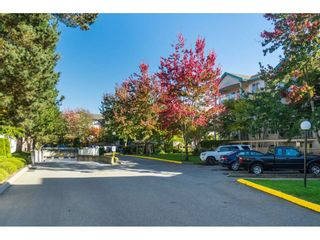 """Photo 17: 205 20443 53RD Avenue in Langley: Langley City Condo for sale in """"Countryside Estates"""" : MLS®# R2408980"""