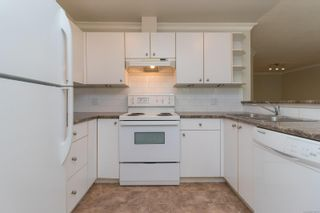 Photo 7: 202 1025 Meares St in : Vi Downtown Condo for sale (Victoria)  : MLS®# 875673