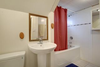 Photo 25: 11844 ELBOW Drive SW in Calgary: Canyon Meadows Detached for sale : MLS®# A1036334
