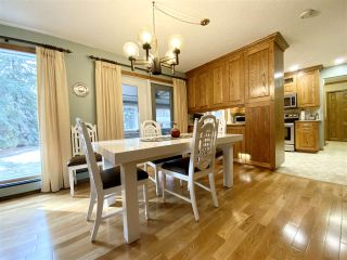 Photo 42: 471028 RGE RD 241: Rural Wetaskiwin County House for sale : MLS®# E4233950