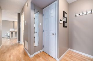 Photo 14: 304 126 24 Avenue SW in Calgary: Mission Apartment for sale : MLS®# A1146945