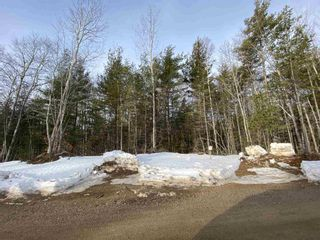 Photo 7: Lot 2 Highway 14 in Windsor: 403-Hants County Vacant Land for sale (Annapolis Valley)  : MLS®# 202104608