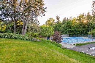 Photo 18: 7372 2ND Street in Burnaby: East Burnaby House for sale (Burnaby East)  : MLS®# R2369395
