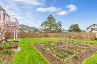 """Photo 28: 34616 CALDER Place in Abbotsford: Abbotsford East House for sale in """"McMillan"""" : MLS®# R2563991"""